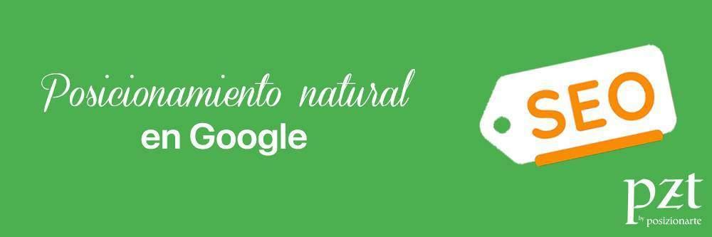 agencia seo - pzt - posicionamiento natural