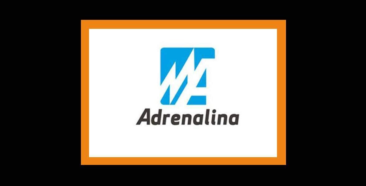agencia seo -pzt- adrenalina 9
