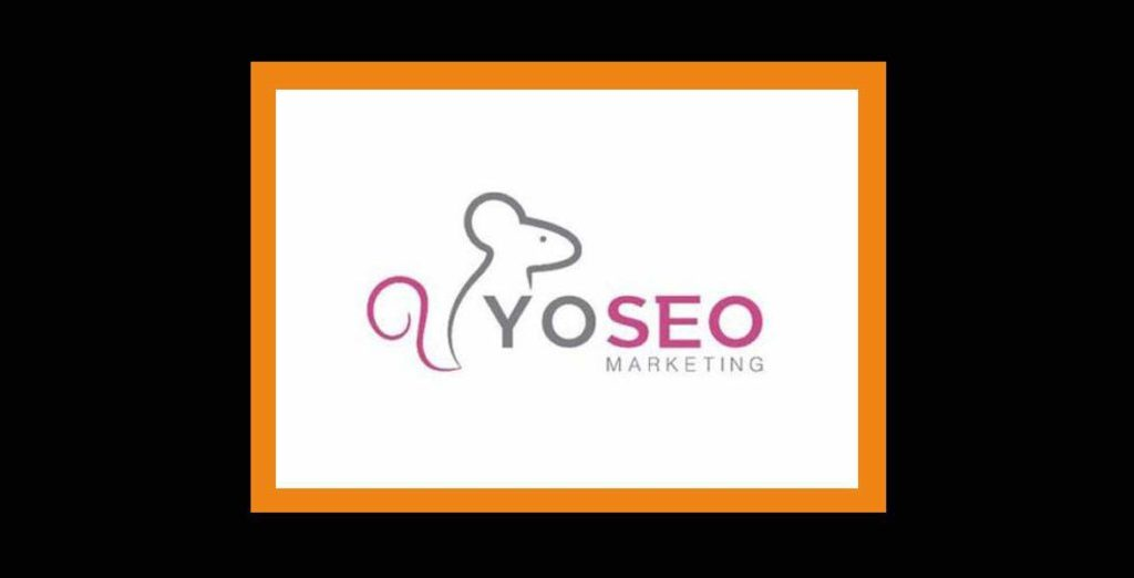 agencia seo -pzt- yo seo 10