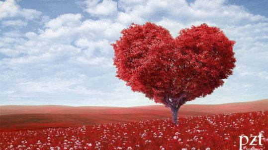 marketing online en San Valentín