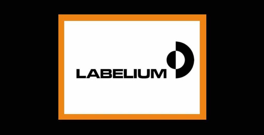 agencia seo -pzt- labelium