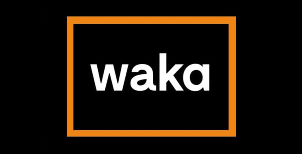 agencia seo -pzt- marketing waka