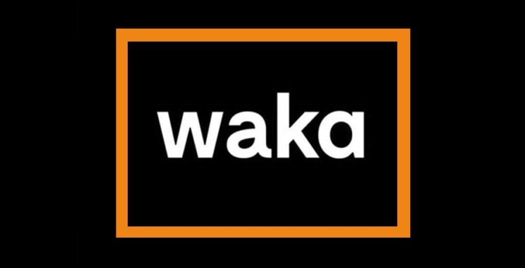 agencia seo -pzt- marketing waka