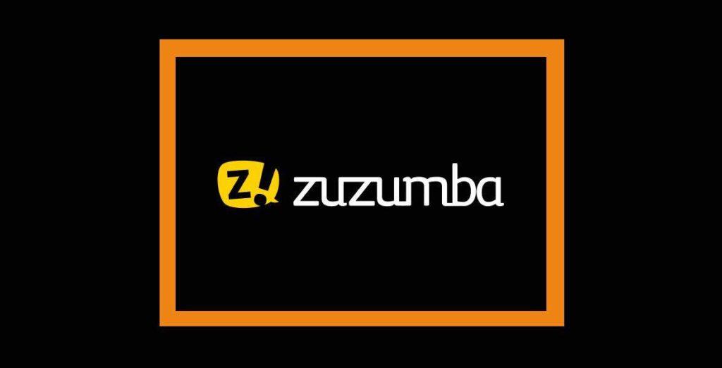 agencia seo -pzt- marketing zuzumba