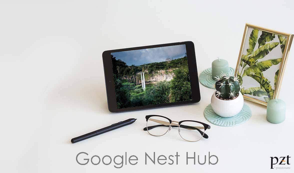 agencia seo-pzt-google nest hub