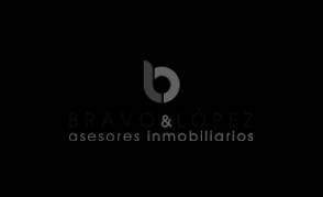 Agencia-SEM-Cliente-BRAVO Y LOPEZ GESTION