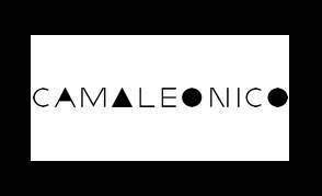 Agencia-SEM-Cliente-CAMALEONICO