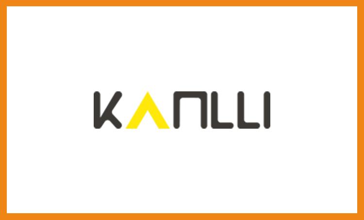 kanlli-posicionamiento-seo-pzt